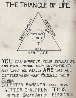 Eugenics triangle of life