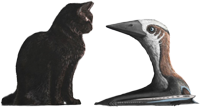 Cat and pterosaur